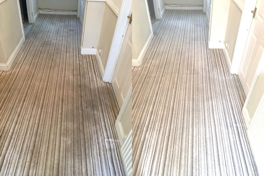 carpet cleaners review 342