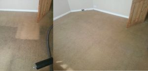 carpet cleaners review 394 1