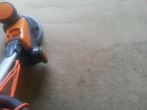carpet cleaners review 404