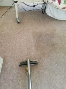 carpet cleaners review 409