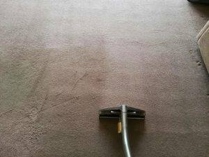 carpet cleaners review 413