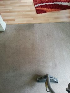 carpet cleaners review 415
