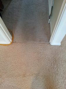 carpet cleaners review 440