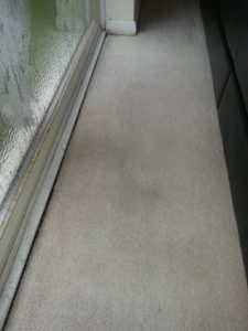 carpet cleaning chelmsford 14b 1